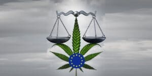 Differences in US and European laws on CBD and their application suggest Europe has a more cautious approach, but laws are inconsistent across the nations.